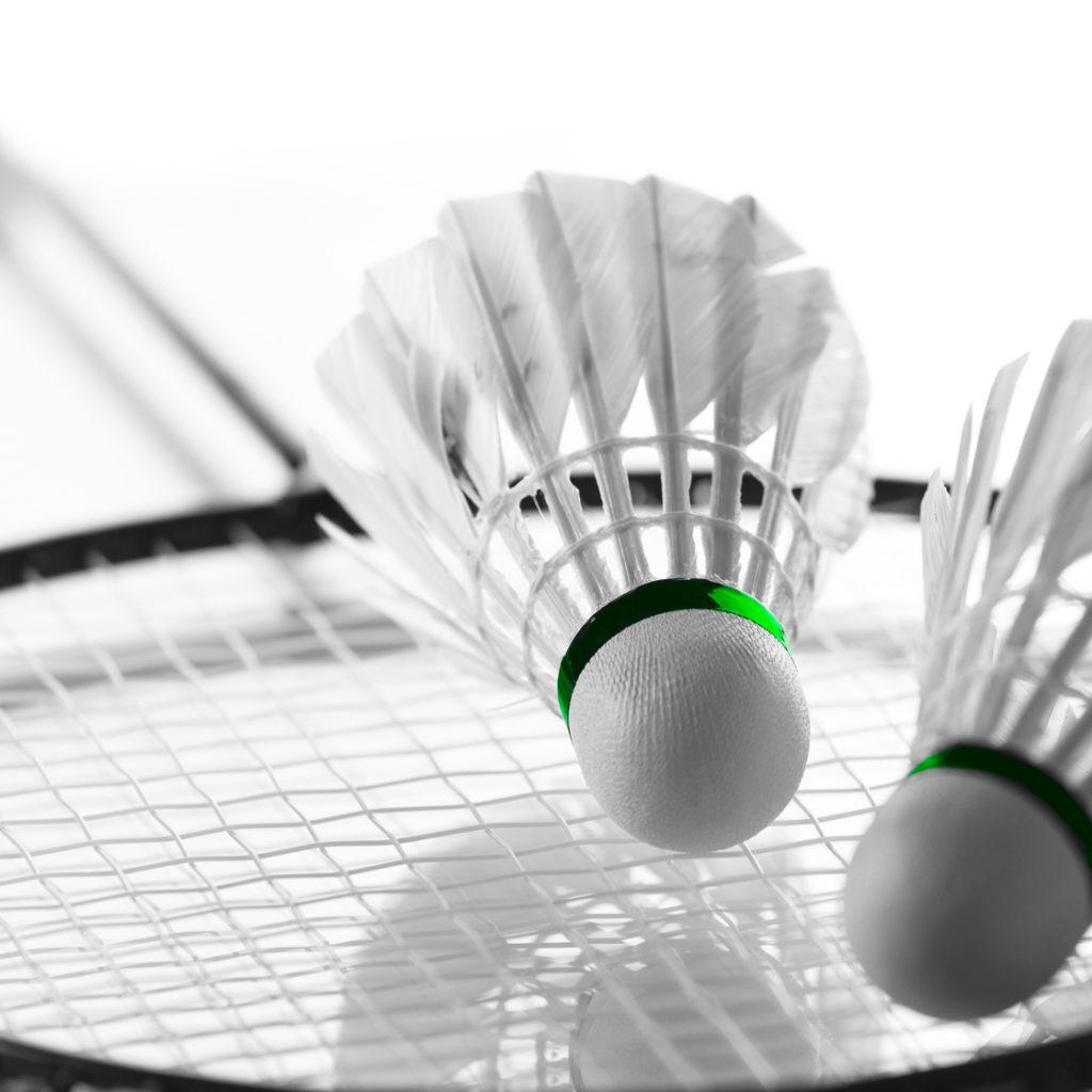 activité badminton